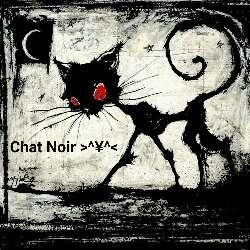 Chat Noir >^¥^<