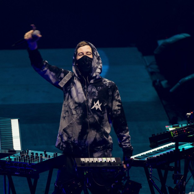 ALAN WALKER (music maker)