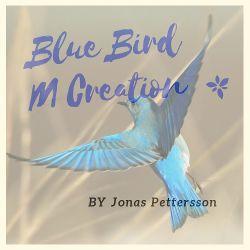 Blue Bird M Creation