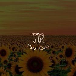 Tesho Remix